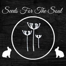 Seeds For The Soul Ltd