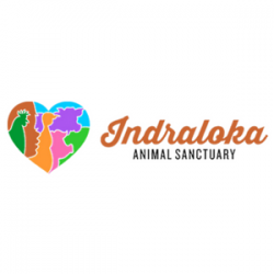 Indraloka Animal Sanctuary